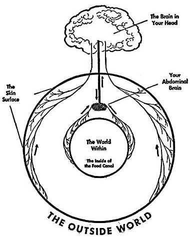 nervous system balance